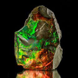 Ammolite2